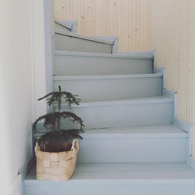 Muuttokuormassa tnn huonekuusi kin uusikoti portaat lautalattia puutalo stairs newhomehellip