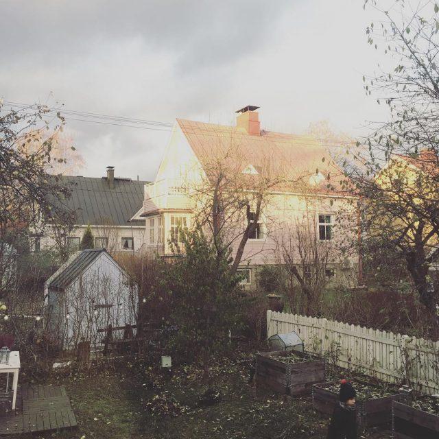 Iltapivn ikkunankym ja kaverilleen yksin lhtenyt ekaluokkalainen puutarha myson windowviewhellip